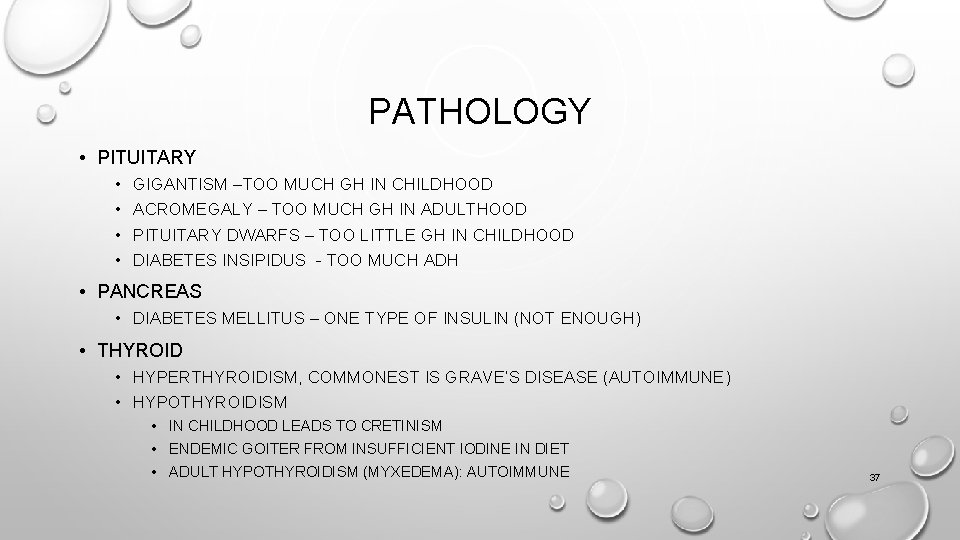 PATHOLOGY • PITUITARY • • GIGANTISM –TOO MUCH GH IN CHILDHOOD ACROMEGALY – TOO