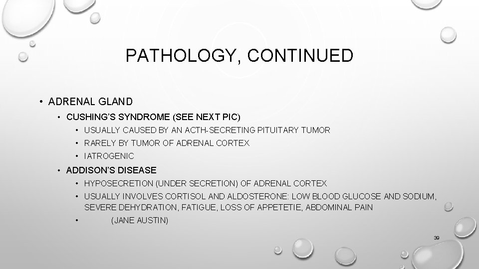 PATHOLOGY, CONTINUED • ADRENAL GLAND • CUSHING'S SYNDROME (SEE NEXT PIC) • USUALLY CAUSED