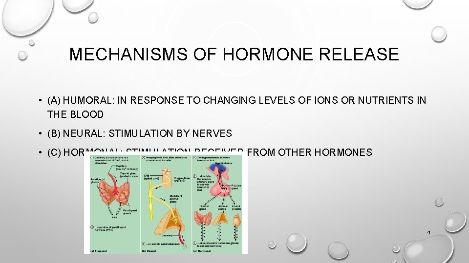 MECHANISMS OF HORMONE RELEASE • (A) HUMORAL: IN RESPONSE TO CHANGING LEVELS OF IONS