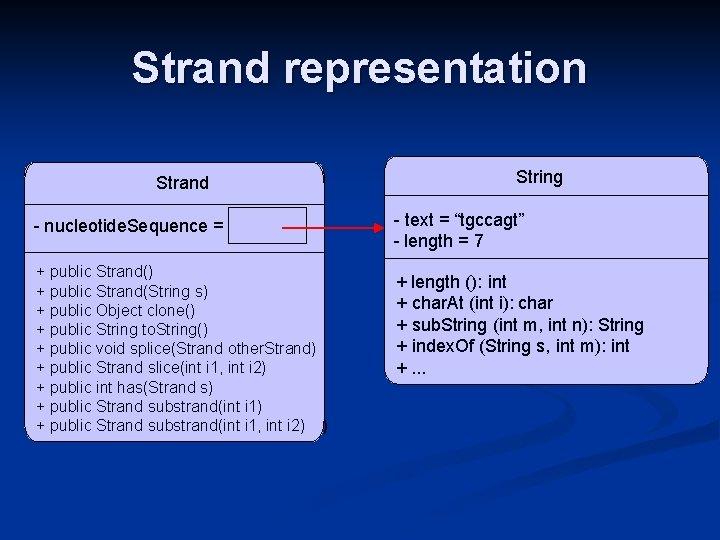 Strand representation Strand - nucleotide. Sequence = + public. Strand() slice(int i 1, int