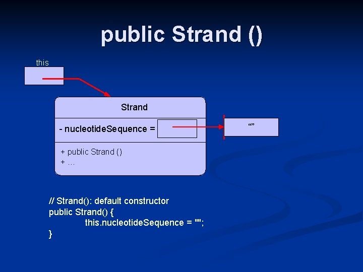 public Strand () this Strand - nucleotide. Sequence = + public Strand () +…