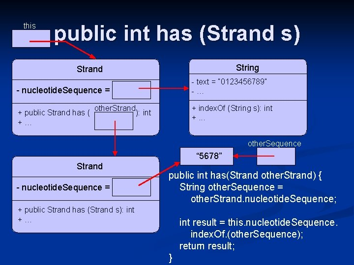 this public int has (Strand s) String Strand - nucleotide. Sequence = - text