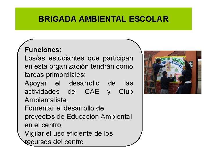 BRIGADA AMBIENTAL ESCOLAR Funciones: Los/as estudiantes que participan en esta organización tendrán como tareas