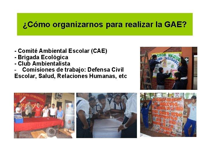 ¿Cómo organizarnos para realizar la GAE? - Comité Ambiental Escolar (CAE) - Brigada Ecológica