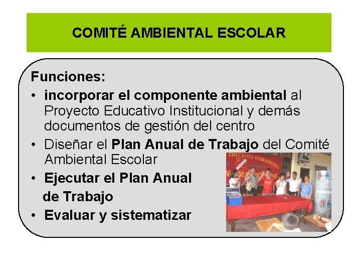 COMITÉ AMBIENTAL ESCOLAR Funciones: • incorporar el componente ambiental al Proyecto Educativo Institucional y