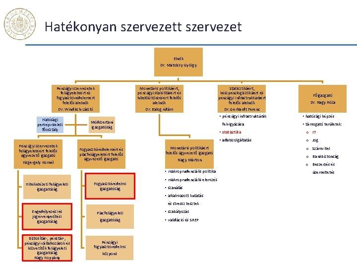 Hatékonyan szervezett szervezet Elnök Dr. Matolcsy György Pénzügyi szervezetek felügyeletéért és fogyasztóvédelemért felelős alelnök