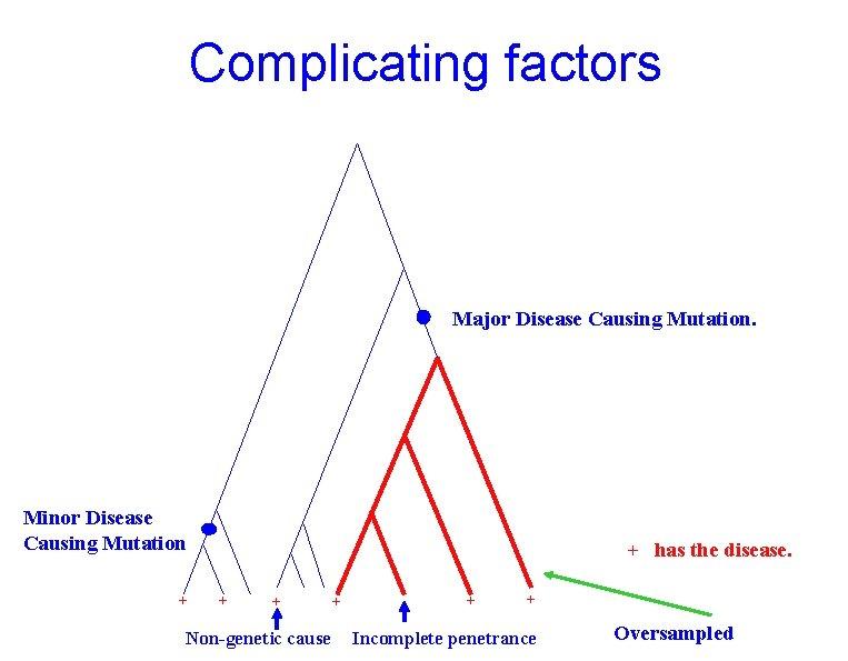 Complicating factors Major Disease Causing Mutation. Minor Disease Causing Mutation + + has the