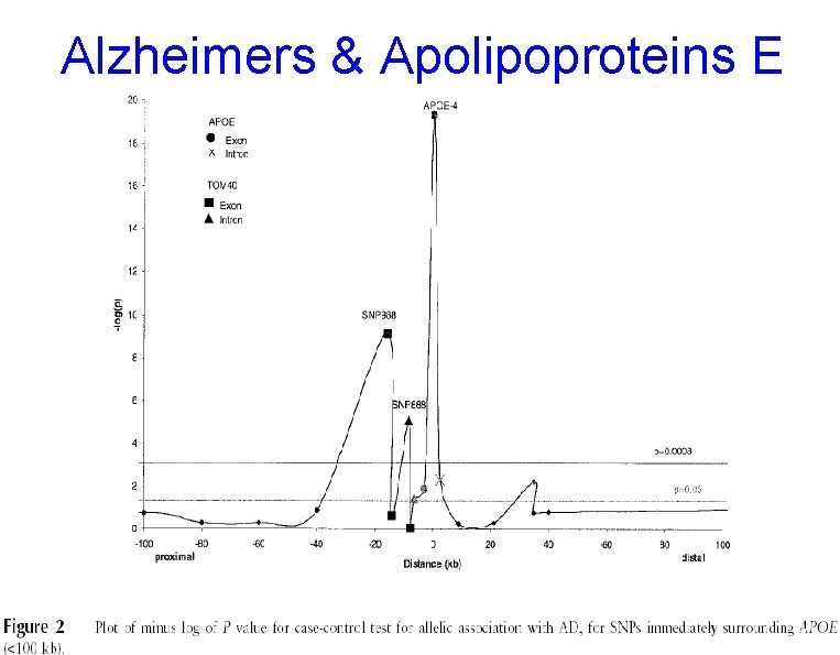 Alzheimers & Apolipoproteins E