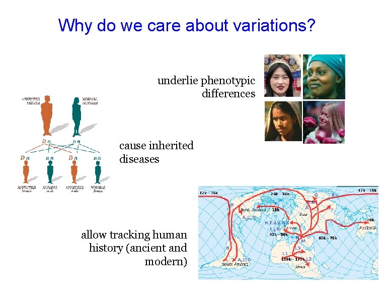 Why do we care about variations? underlie phenotypic differences cause inherited diseases allow tracking