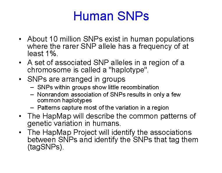 Human SNPs • About 10 million SNPs exist in human populations where the rarer
