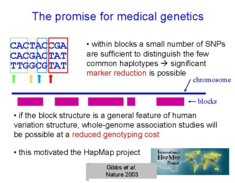 The promise for medical genetics CACTACCGA CACGACTAT TTGGCGTAT • within blocks a small number