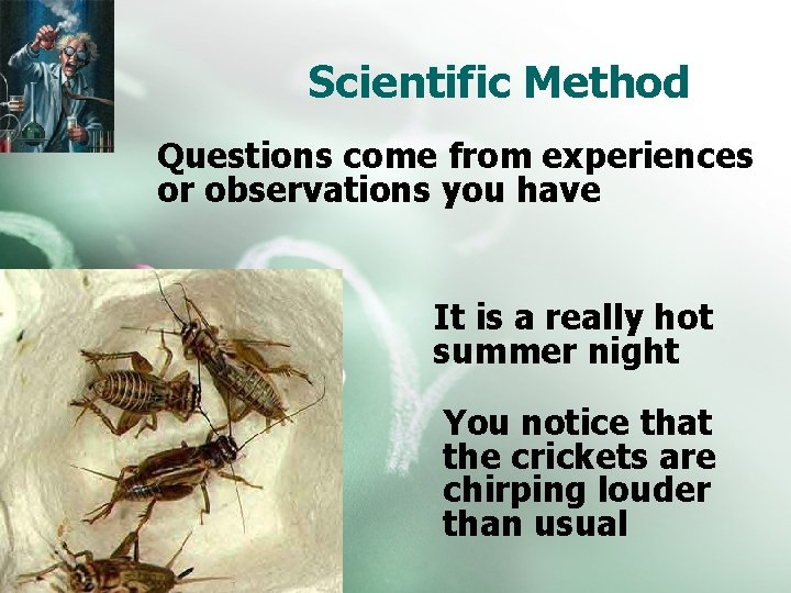 Scientific Method Questions come from experiences or observations you have It is a really