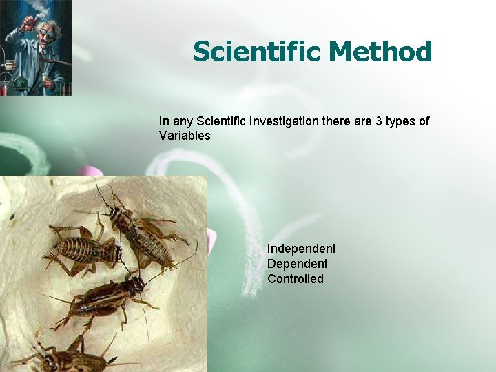 Scientific Method In any Scientific Investigation there are 3 types of Variables Independent Dependent