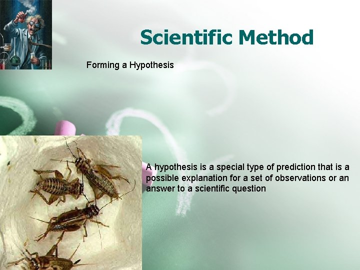 Scientific Method Forming a Hypothesis A hypothesis is a special type of prediction that