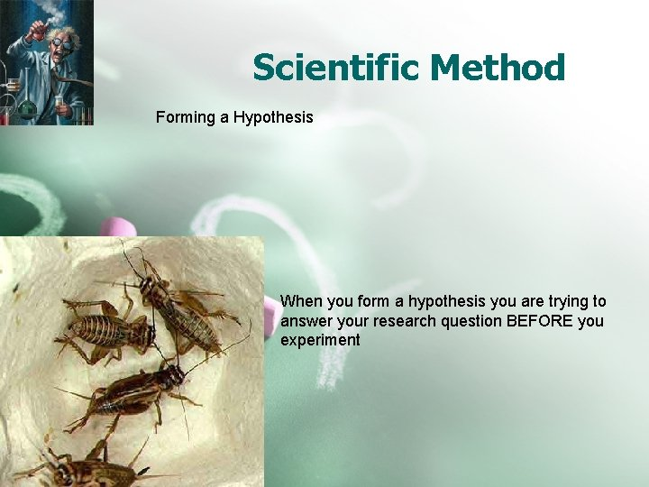 Scientific Method Forming a Hypothesis When you form a hypothesis you are trying to