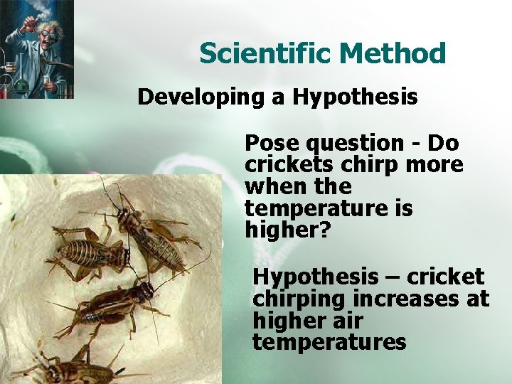 Scientific Method Developing a Hypothesis Pose question - Do crickets chirp more when the