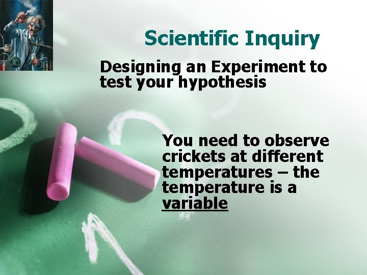 Scientific Inquiry Designing an Experiment to test your hypothesis You need to observe crickets