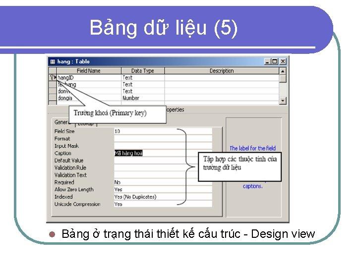 Bảng dữ liệu (5) l Bảng ở trạng thái thiết kế cấu trúc -