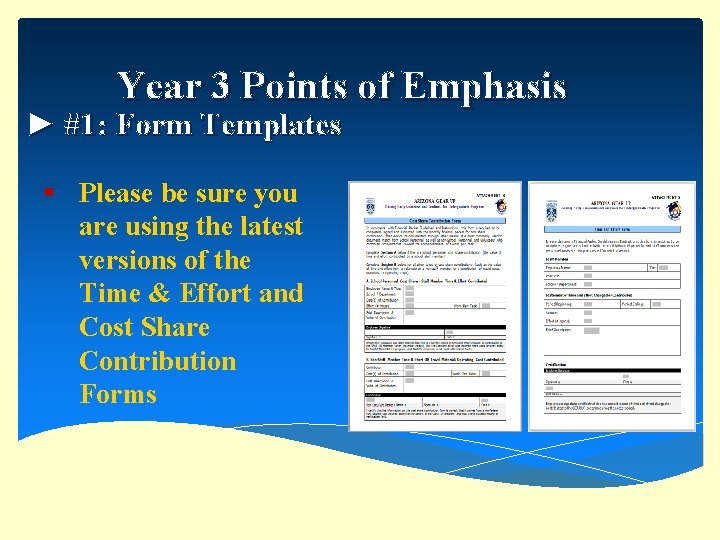 Year 3 Points of Emphasis ► #1: Form Templates § Please be sure you