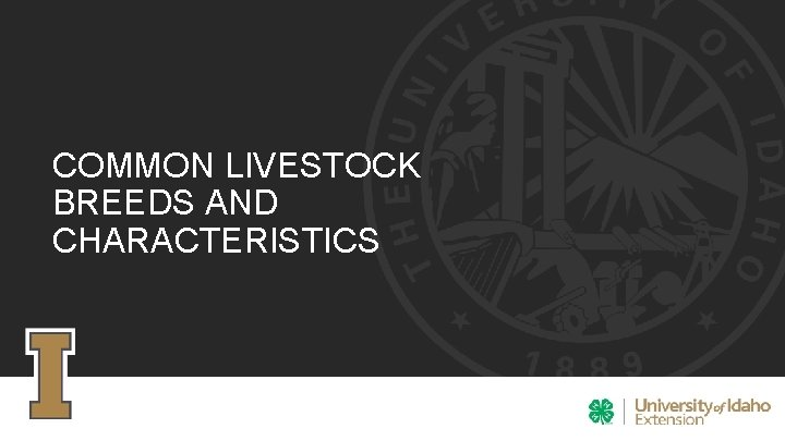 COMMON LIVESTOCK BREEDS AND CHARACTERISTICS