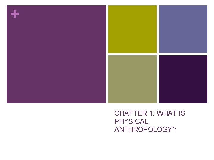 + CHAPTER 1: WHAT IS PHYSICAL ANTHROPOLOGY?