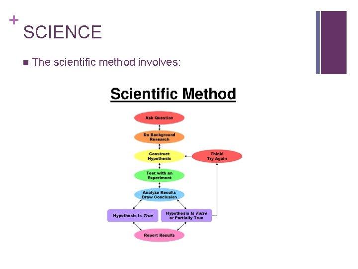 + SCIENCE n The scientific method involves: