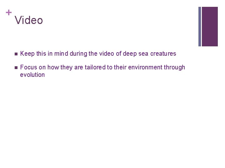 + Video n Keep this in mind during the video of deep sea creatures