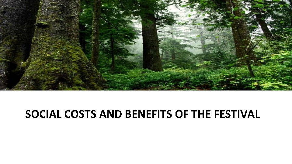 SOCIAL COSTS AND BENEFITS OF THE FESTIVAL