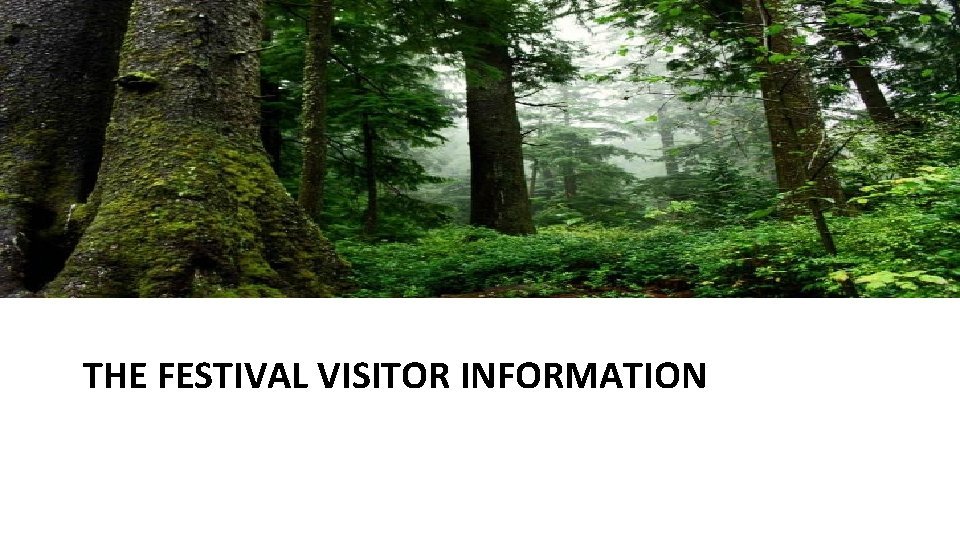 THE FESTIVAL VISITOR INFORMATION