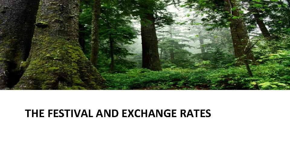 THE FESTIVAL AND EXCHANGE RATES