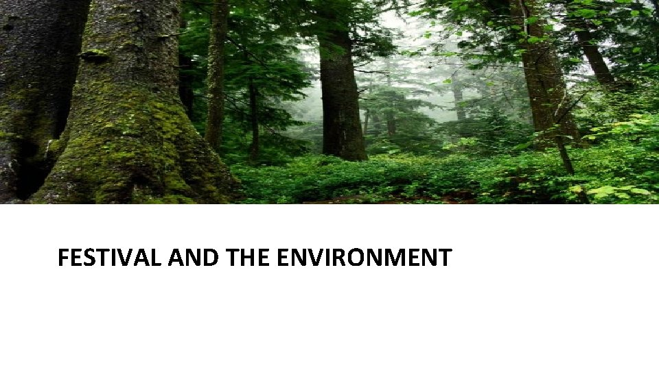 FESTIVAL AND THE ENVIRONMENT