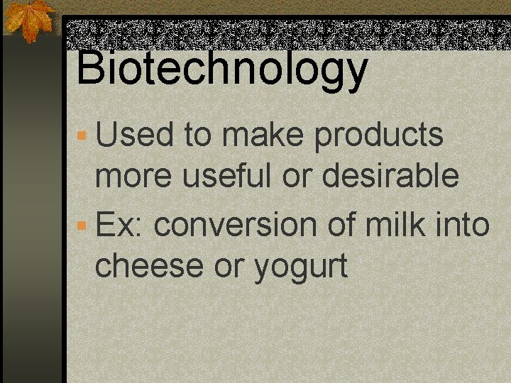 Biotechnology § Used to make products more useful or desirable § Ex: conversion of