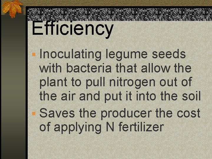Efficiency § Inoculating legume seeds with bacteria that allow the plant to pull nitrogen