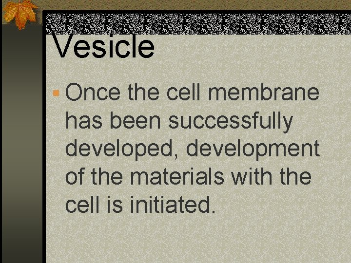 Vesicle § Once the cell membrane has been successfully developed, development of the materials