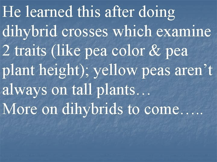 He learned this after doing dihybrid crosses which examine 2 traits (like pea color