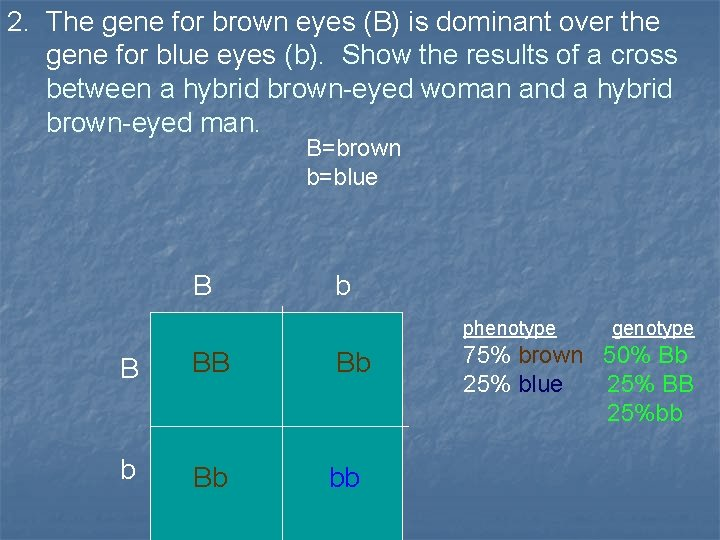 2. The gene for brown eyes (B) is dominant over the gene for blue