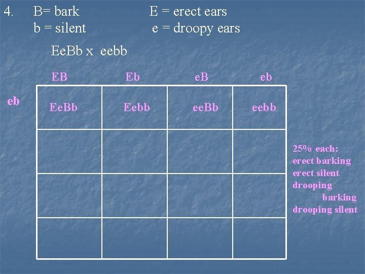 4. B= bark b = silent E = erect ears e = droopy ears
