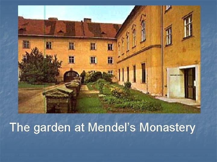 The garden at Mendel's Monastery