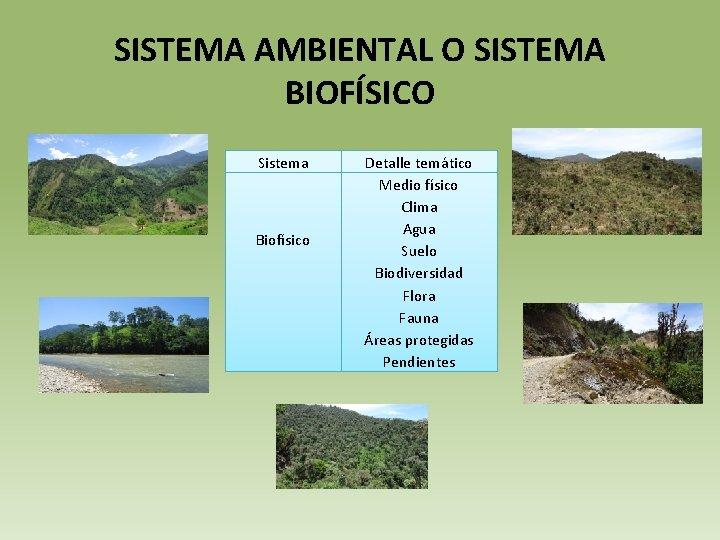 SISTEMA AMBIENTAL O SISTEMA BIOFÍSICO Sistema Biofísico Detalle temático Medio físico Clima Agua Suelo