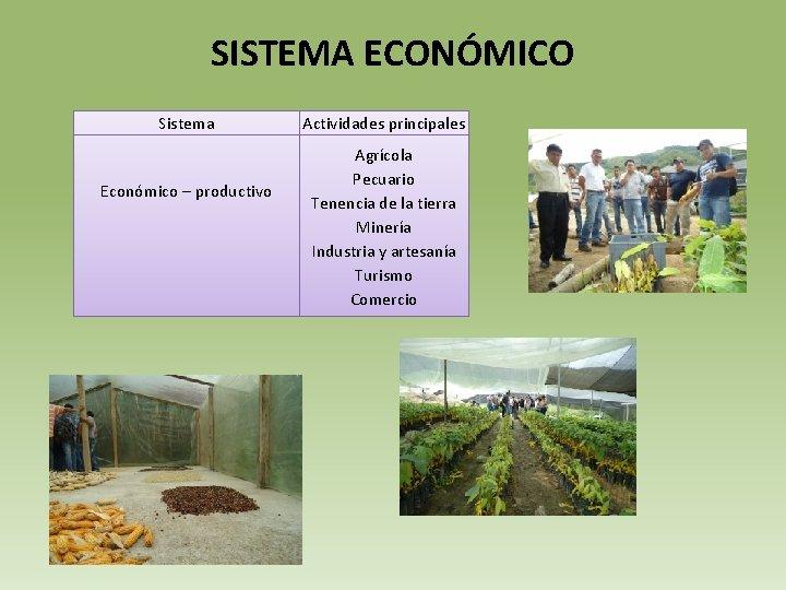 SISTEMA ECONÓMICO Sistema Económico – productivo Actividades principales Agrícola Pecuario Tenencia de la tierra