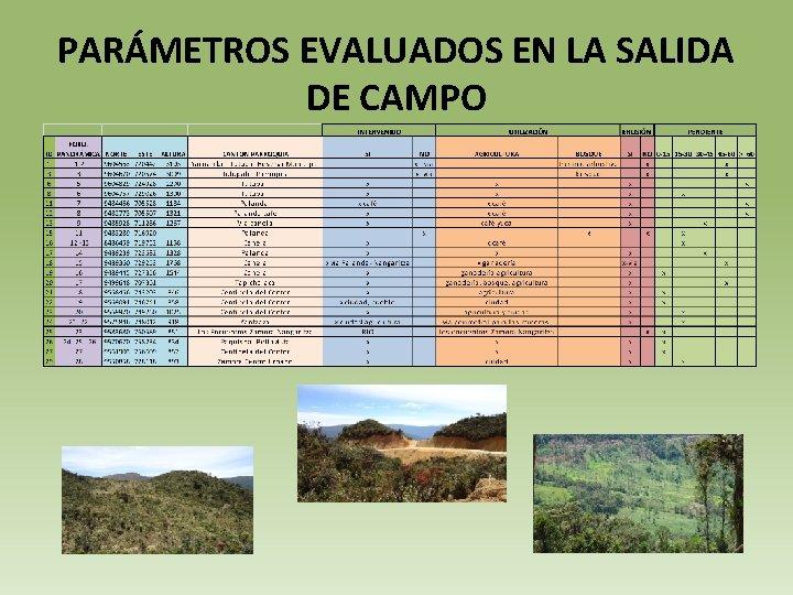 PARÁMETROS EVALUADOS EN LA SALIDA DE CAMPO