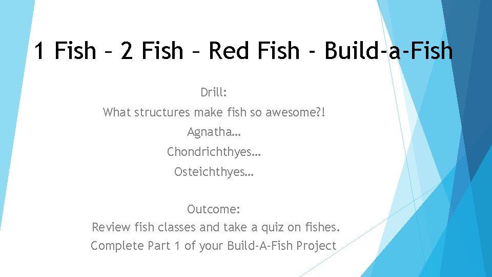 1 Fish – 2 Fish – Red Fish - Build-a-Fish Drill: What structures make