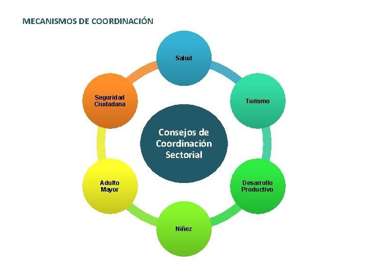 MECANISMOS DE COORDINACIÓN Salud Seguridad Ciudadana Turismo Consejos de Coordinación Sectorial Adulto Mayor Desarrollo
