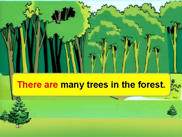 There are many trees in the forest.