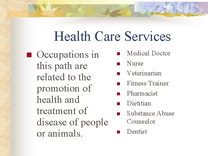 Health Care Services n Occupations in this path are related to the promotion of