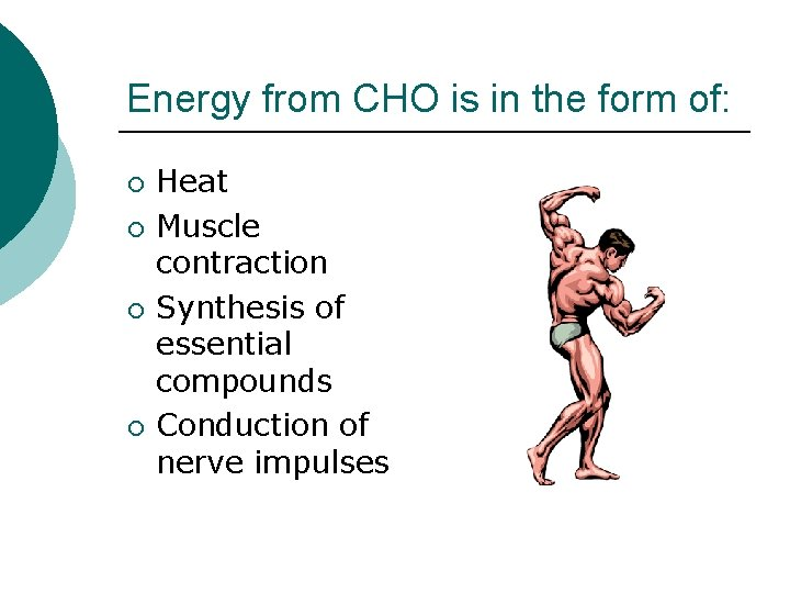 Energy from CHO is in the form of: ¡ ¡ Heat Muscle contraction Synthesis