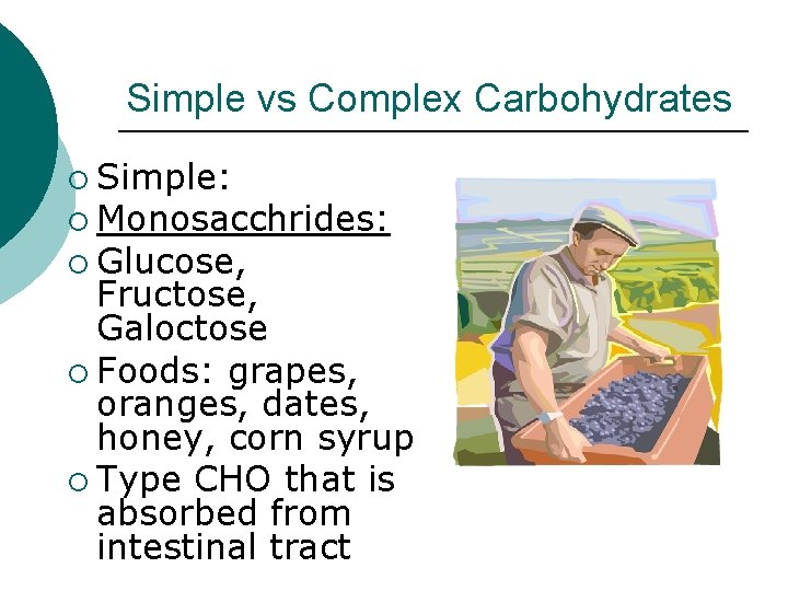Simple vs Complex Carbohydrates ¡ Simple: ¡ Monosacchrides: ¡ Glucose, Fructose, Galoctose ¡ Foods: