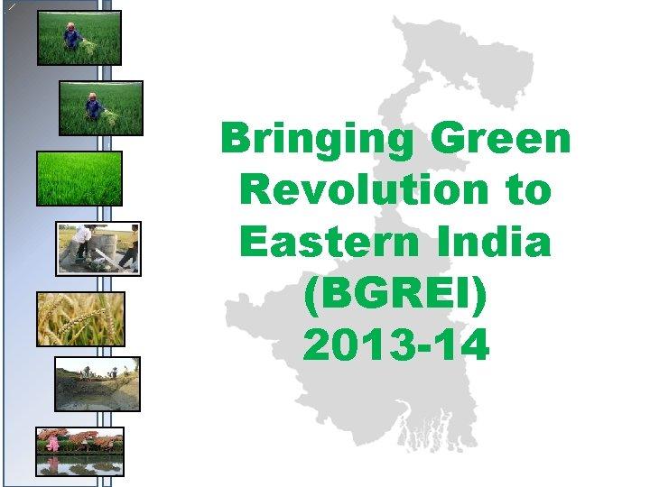 Bringing Green Revolution to Eastern India (BGREI) 2013 -14