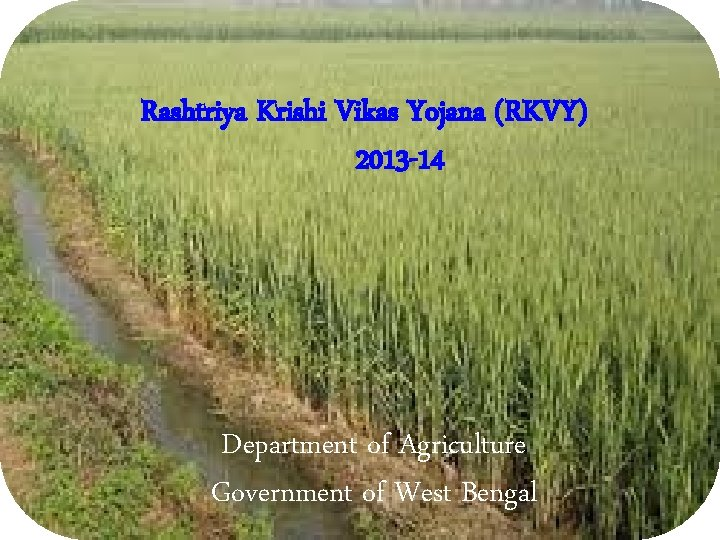 Rashtriya Krishi Vikas Yojana (RKVY) 2013 -14 Department of Agriculture Government of West Bengal