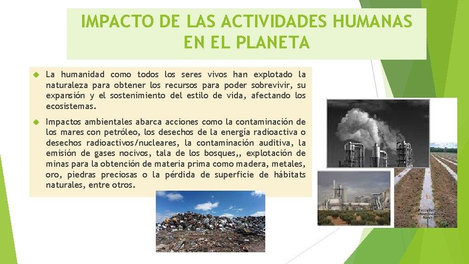 Ecosistemas Analizar E Inferir Los Impactos De Las